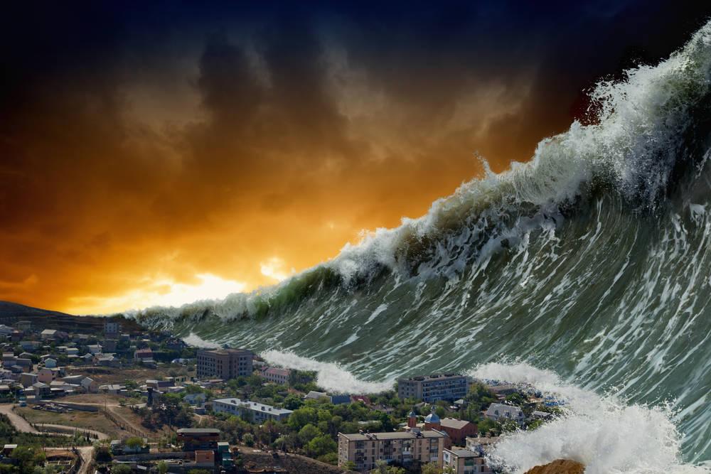 Cuando el mar te devuelve la vida